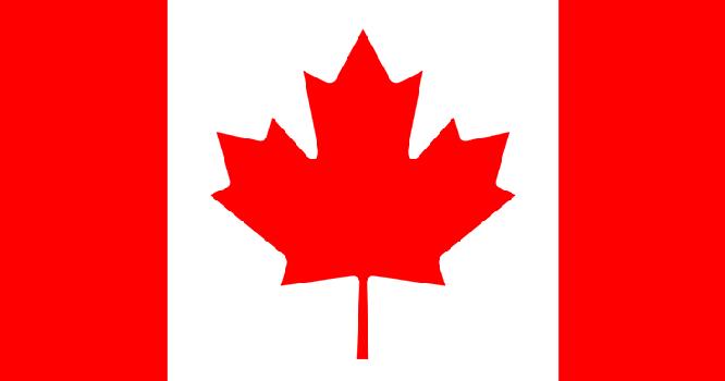 Image result for canada guns