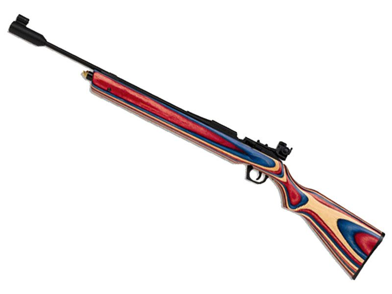 Daisy 888 Medalist Competition CO2 Pellet Rifle