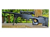ASG AW .308 Sniper Airsoft Rifle